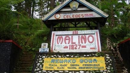 malino-1